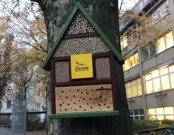 Projekt: Insektenhotel
